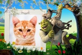 Moldura - Shrek Burro E Gato