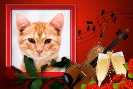 Amor-com-Violino-e-Tacas