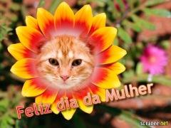 Moldura - Dia Da Mulher Na Flor