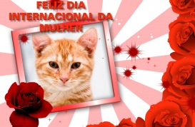 Moldura - Feliz Dia Internacional Da Mulher