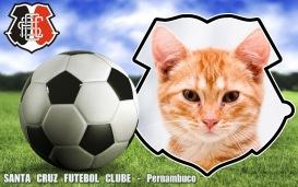 Moldura - Santa Cruz Futebol Clube Pernambuco