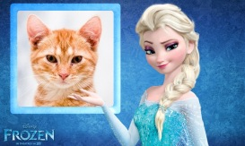 Frozen Photo Frame - Princess Elsa