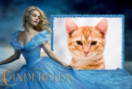 Moldura - Cinderella 2015