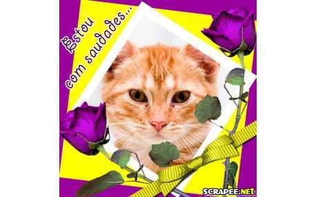 Moldura - Cartao Com Rosas