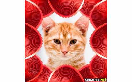 Moldura - Borda Sonfonada Vermelha