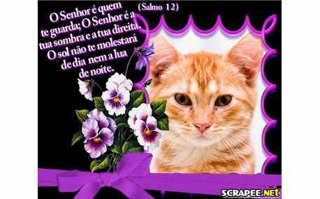 Moldura881 versiculo de salmos
