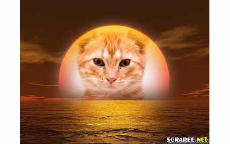 Moldura1018 nascer do sol