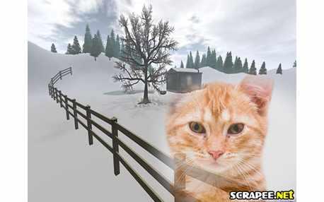 Moldura - Neve