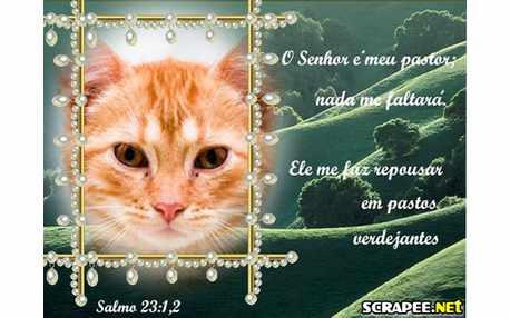 Moldura - Salmo 23