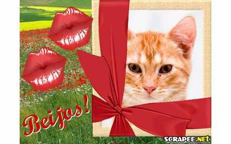 Moldura - Dois Beijos