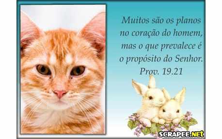 Moldura - Proverbios 19