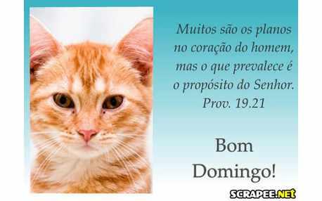 Moldura1214 mensagen biblica