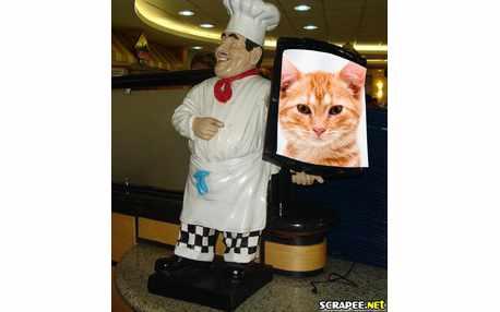 1216-cozinheiro