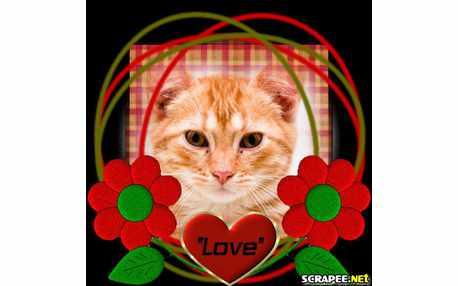 1293-love