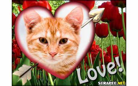 Moldura - Love