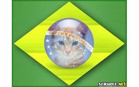 Moldura1370 bandeira do brasil