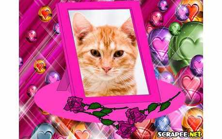 Moldura - Porta Retrato Pink