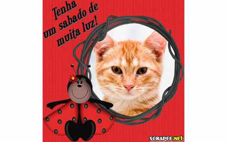 Moldura - Joaninha