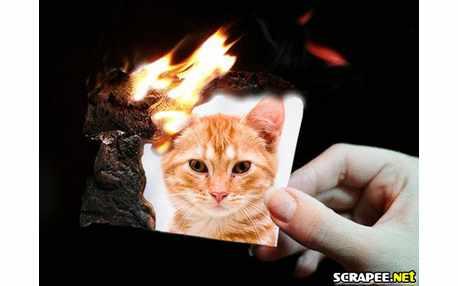 Moldura1444 pegando fogo