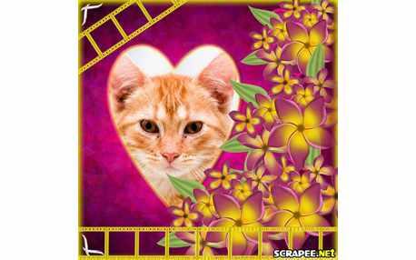 1523-muitissimas-flores