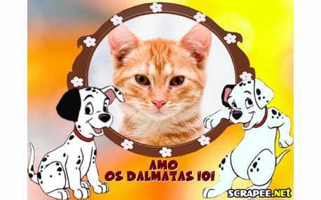 1591-amo-os-dalmatas