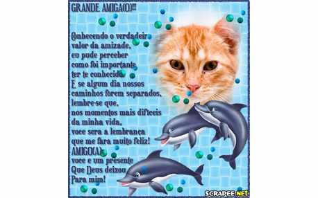Moldura - Golfinhos