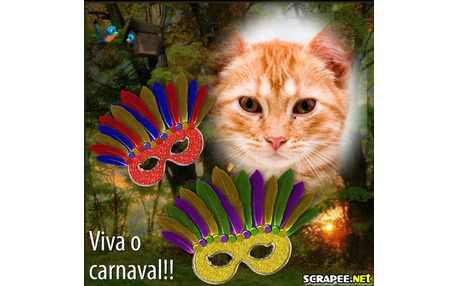 Moldura - Mascara De Carnaval