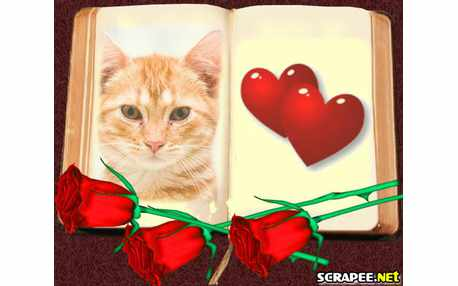 Moldura - Livro Do Amor