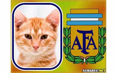 Moldura1896 argentina futebol