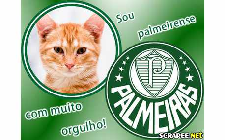 Moldura - Palmeiras