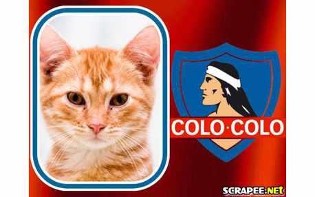 Moldura - Colo Colo