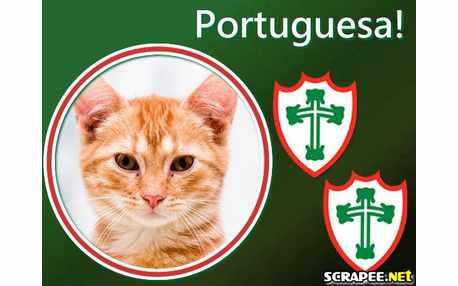 1906-portuguesa