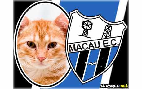 Moldura - Macau Ec