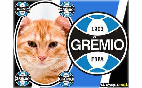 Moldura - Gremio
