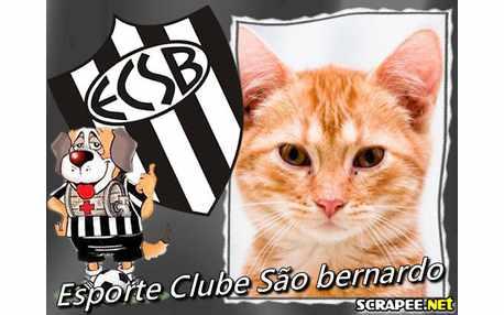 1925-sao-bernardo-esporte-clube