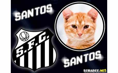 1940-santos