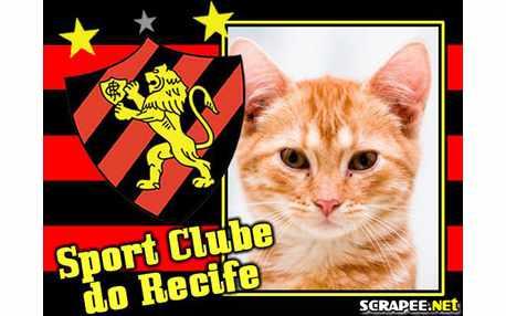 Moldura1964 sport clube do recife