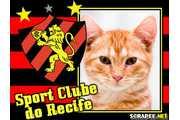 1964-sport-clube-do-recife
