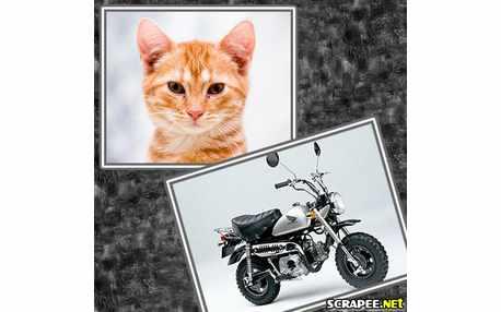 2003-moto-antiga