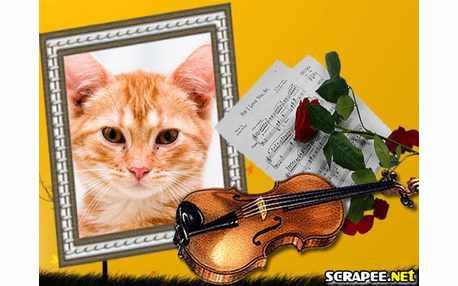 Moldura - Violino