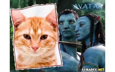 Moldura - Avatar