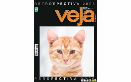 Moldura - Revista Veja Montagem