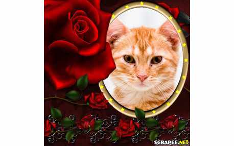 Moldura2234 rosa vermelha