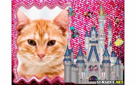 Moldura - Castelo Da Disney