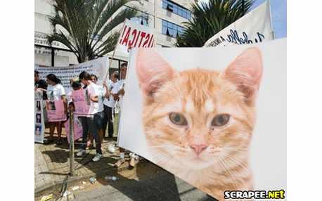 Moldura - Protesto