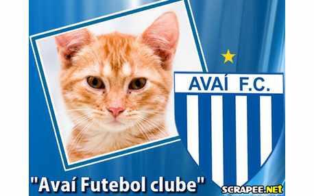 2359-avai-futebol-clube