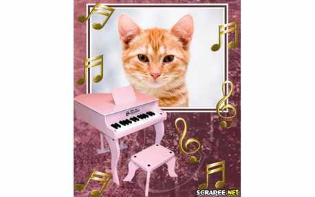 Moldura - Piano Rosa