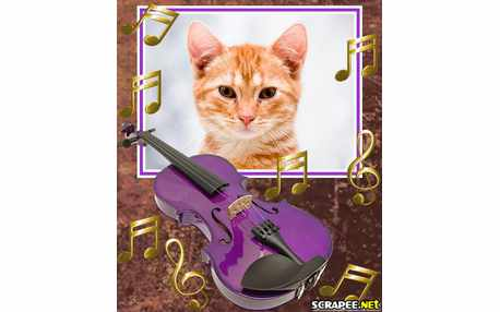 Moldura - Violino Colorido