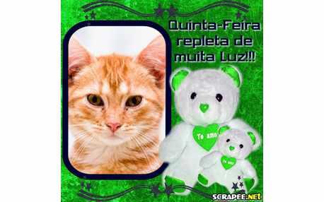 Moldura - Ursinho Verde