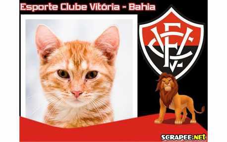 Moldura2401 futebol clube vitoria